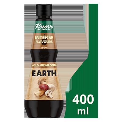 KNORR Intense Flavours Wild Mushroom Earth 400 ml